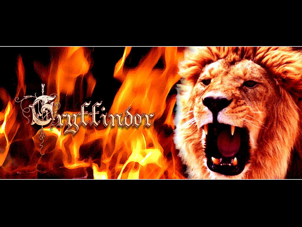 hogsmeade.pl/images/photoalbum/album_24/gryffindor-gryffindor-7748647-1024-768.jpg